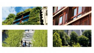 Foto's van vier verschillende klimaatadaptieve oplossingen tegen hitte